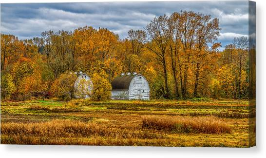 Autumn In The Meadows Canvas Print