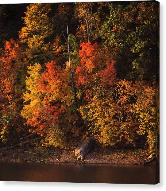 Autumn In The Ozarks Canvas Print