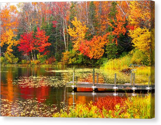 Autumn In Vt Canvas Print