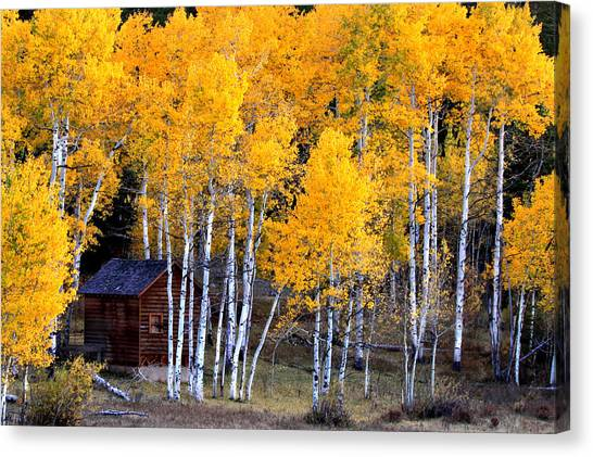 Autumn Inn Canvas Print