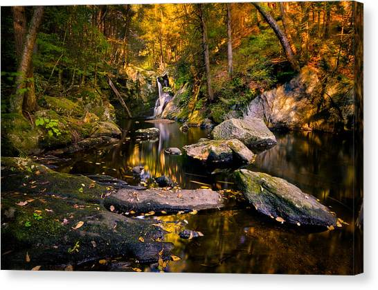 Autumn Is Calling Canvas Print