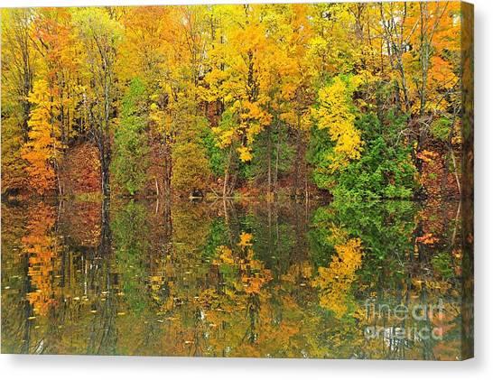 Autumn Landscape Canvas Print - Autumn Kaleidoscope 10 by Terri Gostola