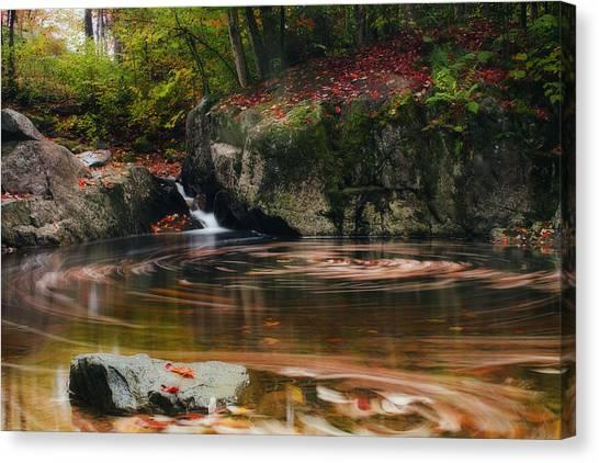 Autumn Leaf Trails Canvas Print