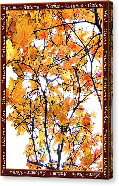 Autumn Leaves 4 Canvas Print