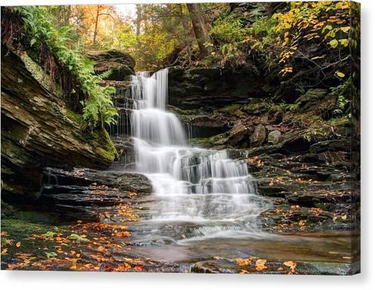 Autumn Leaves Below The Nameless Hidden Waterfall Canvas Print