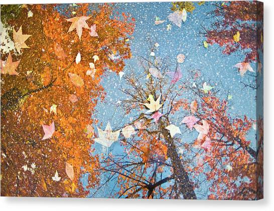 Autumn Leaves Canvas Print by Nazra Zahri