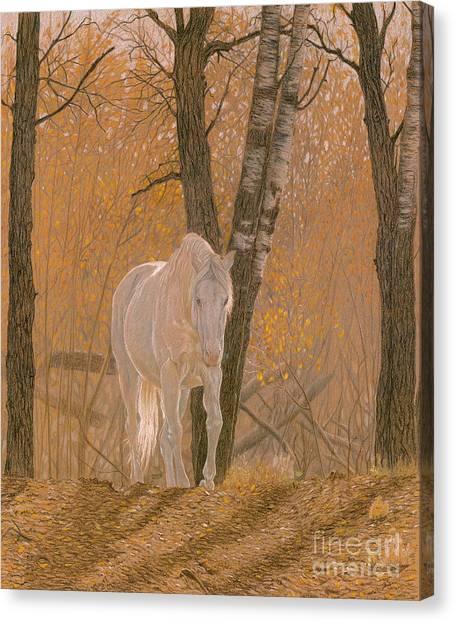 Poplar Canvas Print - Autumn Magic by Laura Klassen