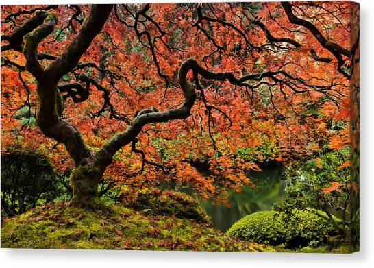 Autumn Magnificence Canvas Print