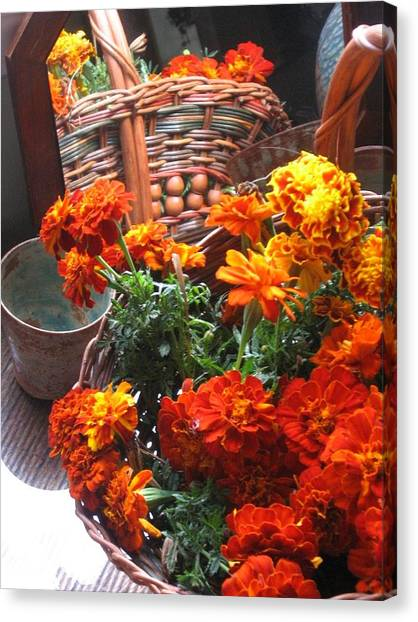 Autumn Marigolds Canvas Print