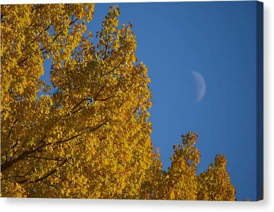 Autumn Moonrise Canvas Print