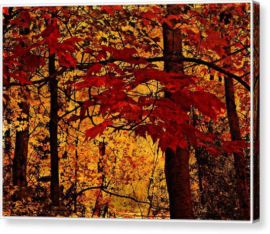 Autumn Mosiac  Canvas Print by Dianne  Lacourciere
