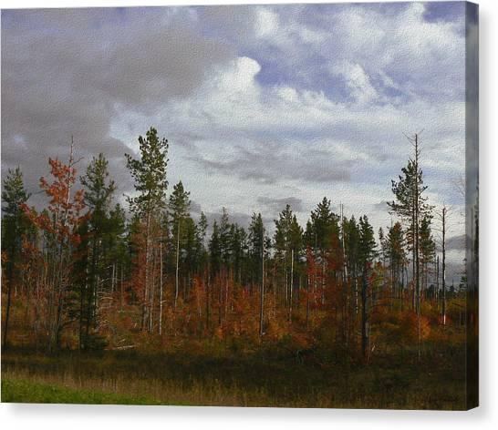 Autumn On Forest Edge Canvas Print