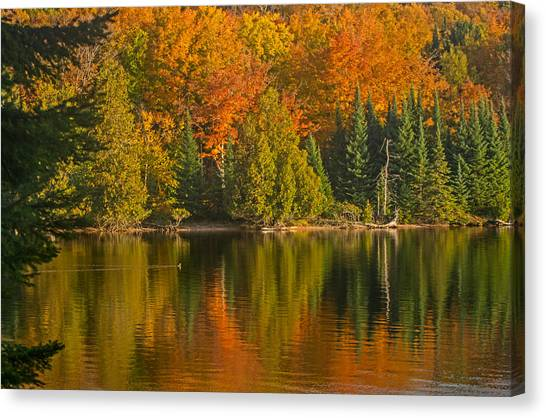 Autumn On Grand Sable Lake Canvas Print