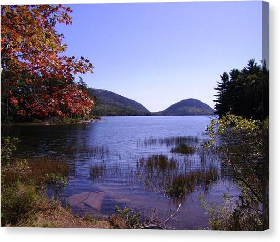 Autumn On Mt. Desert Island Canvas Print