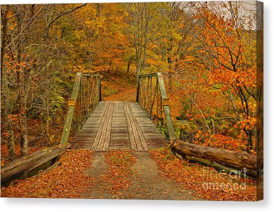 Orange Tree Canvas Print - Autumn Orange Colors by Deborah Benoit