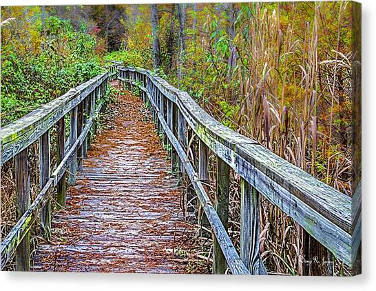 Autumn Outdoors Canvas Print by Barry Jones