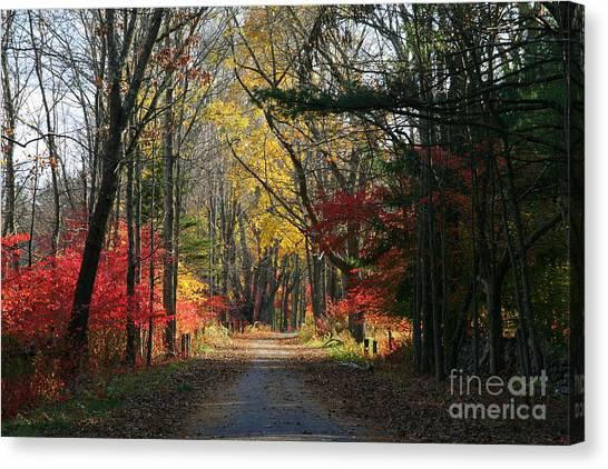 Autumn Paths    No.2 Canvas Print