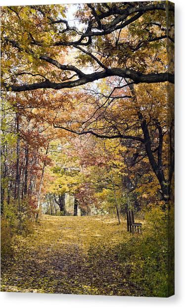 Autumn Pedestrian Path Canvas Print
