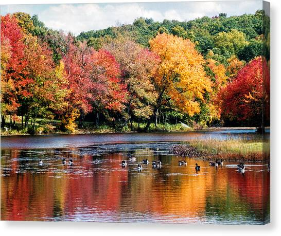 Canvas Print featuring the photograph Autumn Pond by William Selander