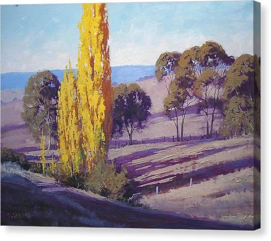 Homestead Canvas Print - Autumn Poplars by Graham Gercken