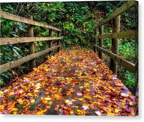Autumn Rain At Joyce Kilmer Memorial Forest Canvas Print