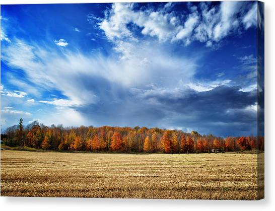 Autumn Rain Over Door County Canvas Print