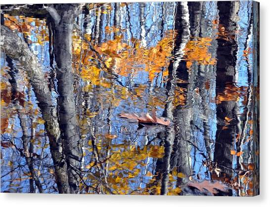 Autumn Reflection With Leaf Canvas Print