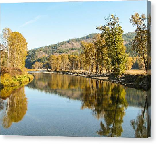 Autumn Reflections 2 Canvas Print by Curtis Stein