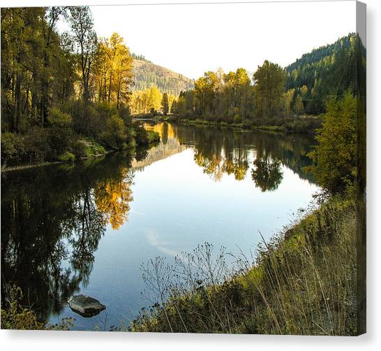 Autumn Reflections 4 Canvas Print by Curtis Stein