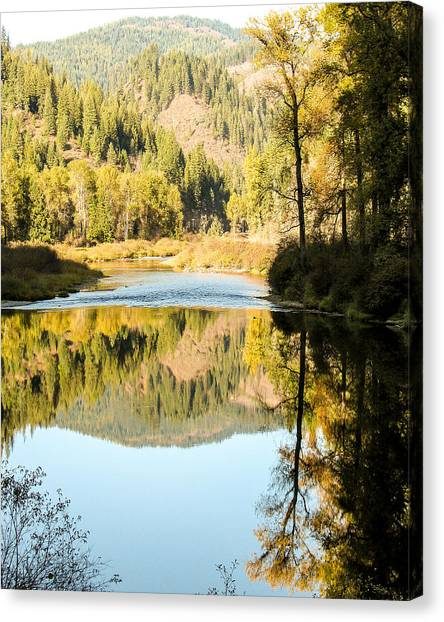 Autumn Reflections 5 Canvas Print by Curtis Stein