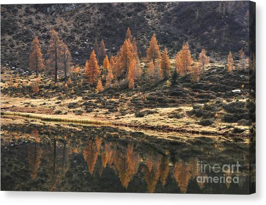 Mountain Dew Canvas Print - Autumn Reflections by Simona Ghidini