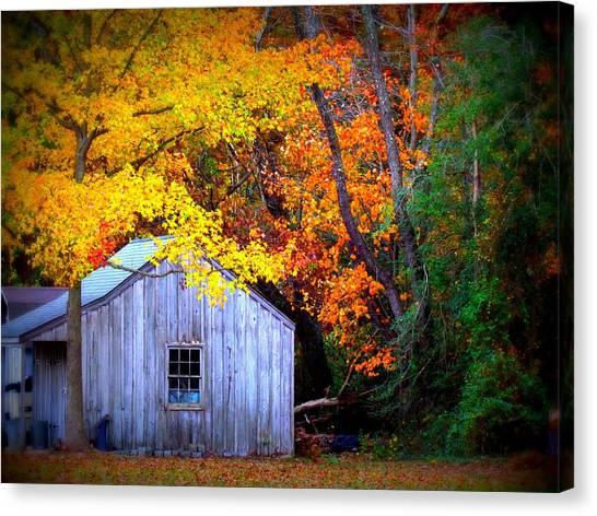 Autumn Rest Canvas Print by Trish Clark