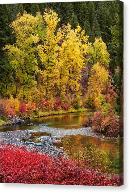 Canvas Print featuring the photograph Autumn River by Mary Jo Allen