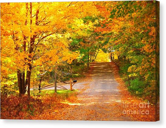 Autumn Road Home Canvas Print