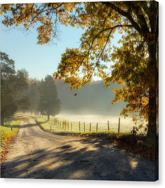 Rural Landscapes Canvas Print - Autumn Road Square by Bill Wakeley