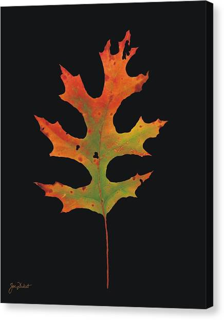 Autumn Scarlet Oak Leaf Canvas Print