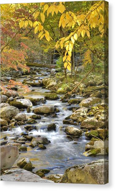 Autumn Serenity Canvas Print by Mary Anne Baker