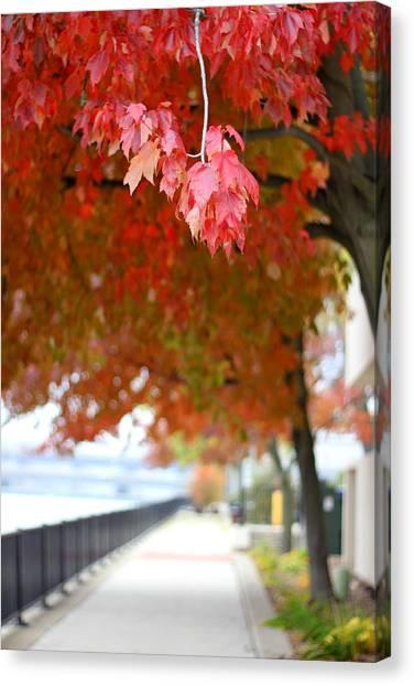 Autumn Sidewalk Canvas Print