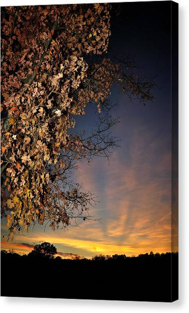 Autumn Sky And Leaves 2 Canvas Print