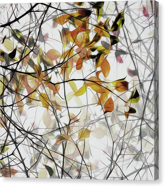 Autumn Song Canvas Print by Gilbert Claes