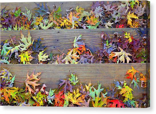 Autumn Steps Canvas Print by William Schmid