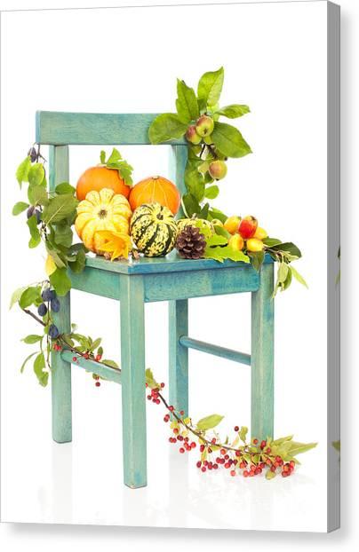 Gourds Canvas Print - Autumn Still Life Chair by Amanda Elwell