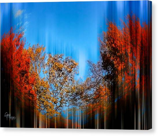 Autumn Streak Canvas Print
