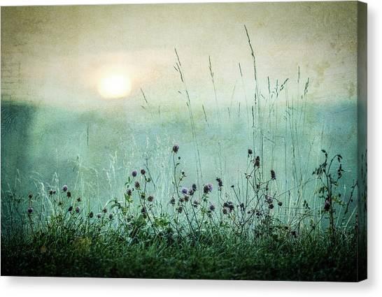 Early Canvas Print - Autumn Sunrise by ?smund Kv?rnstr?m