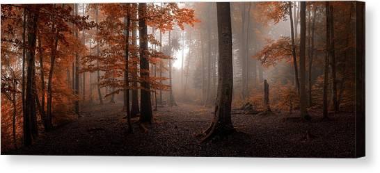 Panorama Canvas Print - Autumn by Tom Meier