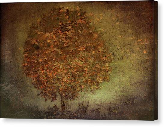 Atmosphere Canvas Print - Autumn Tree by Nel Talen