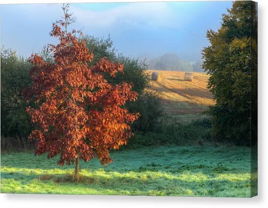 Autumn View Canvas Print