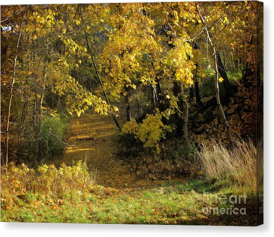 Autumn Walk Canvas Print by Lutz Baar