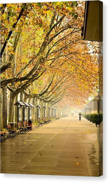 Autumn Walk Xian China Canvas Print
