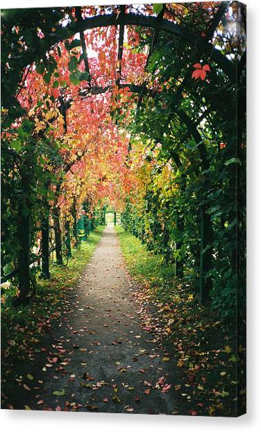 Canvas Print - Autumn Walkway by Christine Rivers